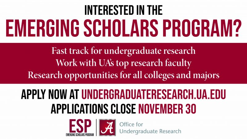Apply to the Emerging Scholars Program!